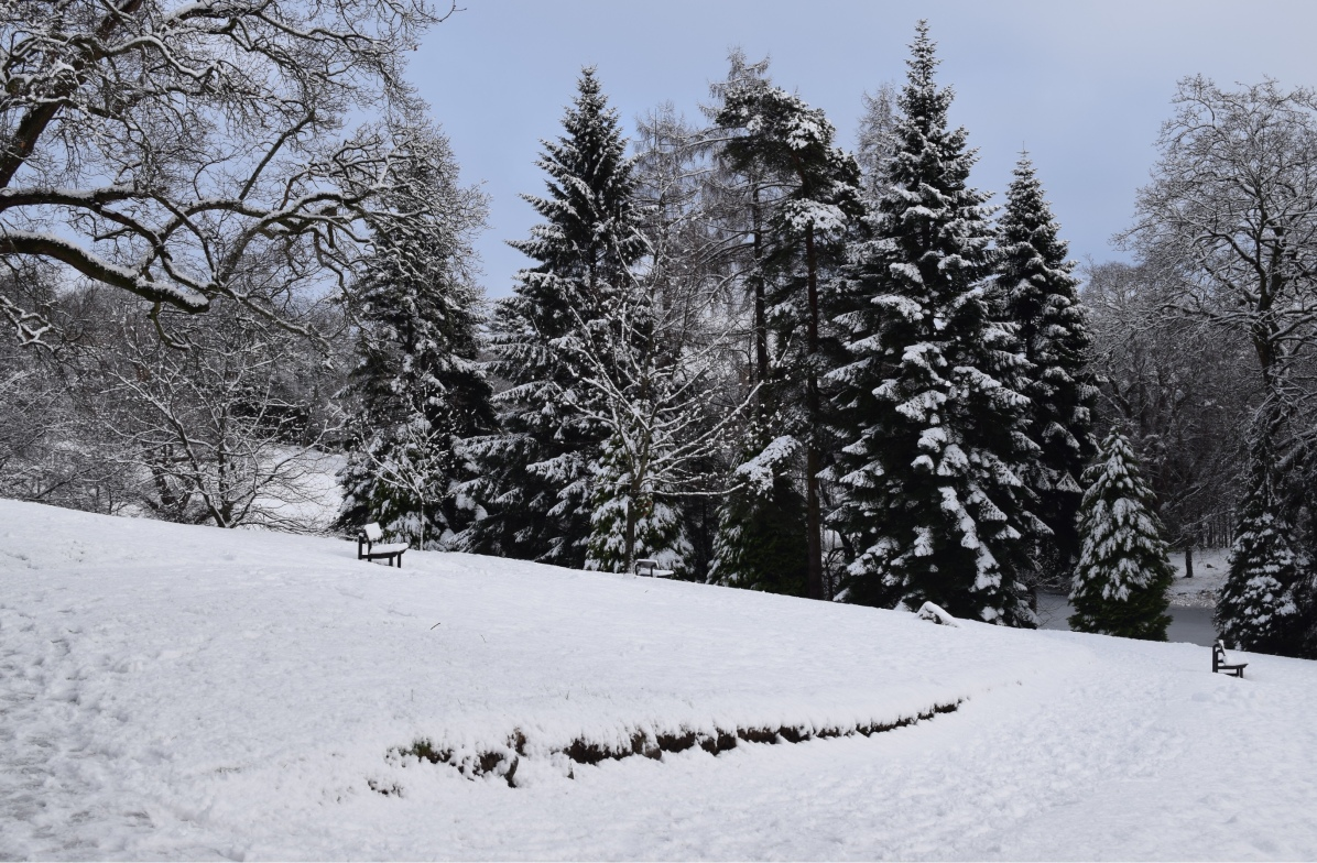 University of Stirling - Winter © Alan Campbell Photography