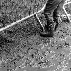 A child's legs - they are standing in mud wearing Spiderman wellies