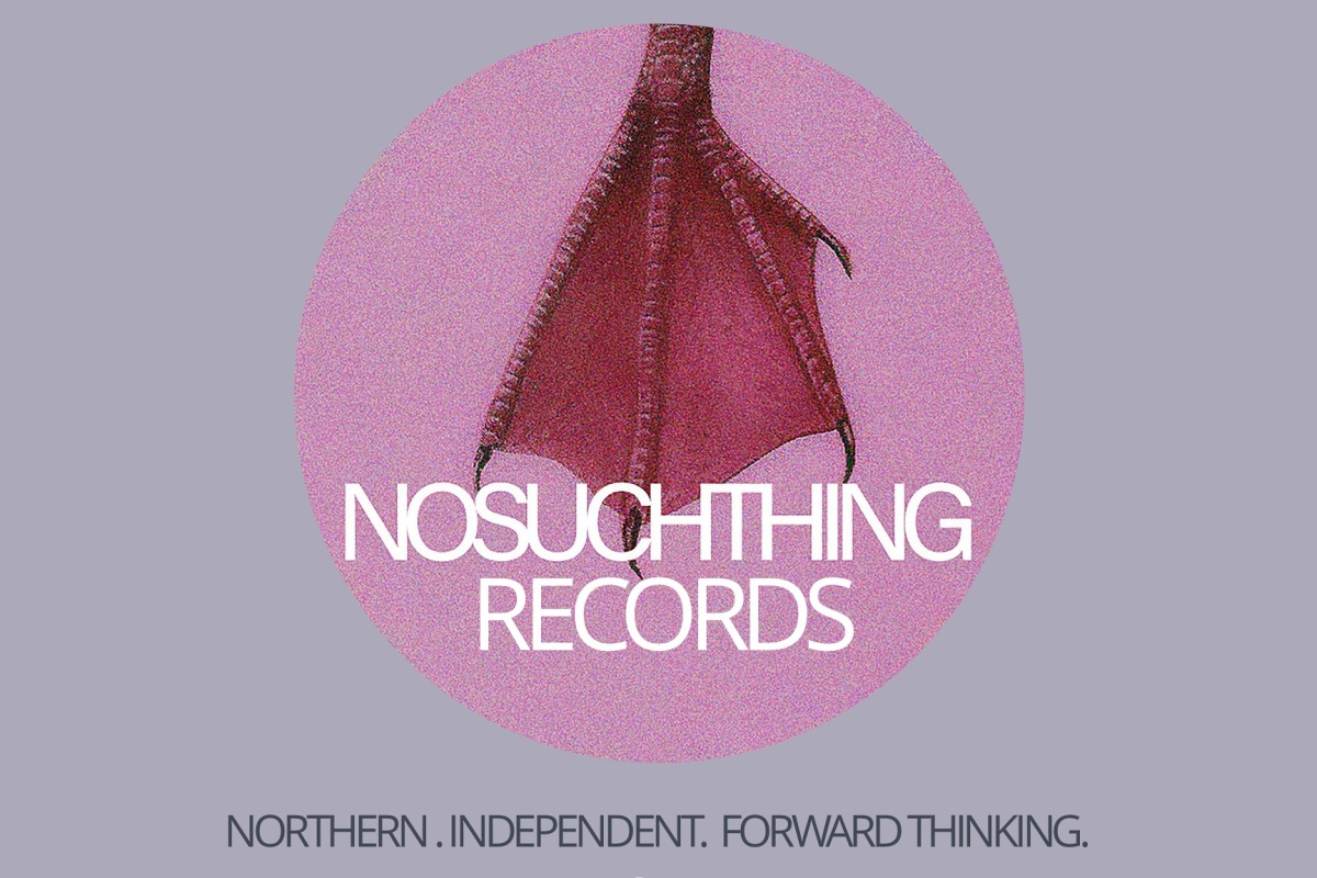 Logo for No Such Thing Records - a dark pink bird's webbed foot on a pale pink background